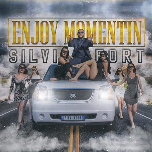SILVI FORT – ENJOY MOMENTIN cover image