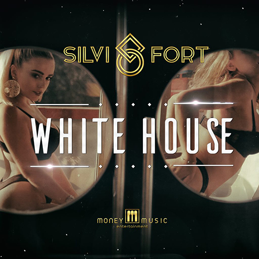 SILVI FORT – WHITE HOUSE cover image